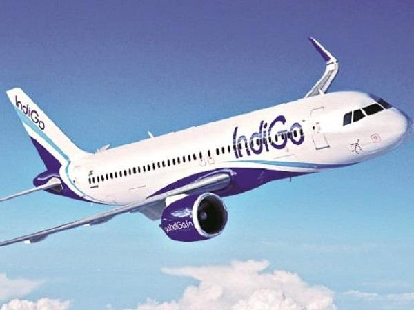 indigo will start flight