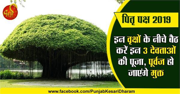 trees worship in pitru paksha