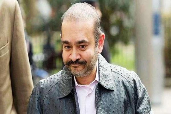 fugitive nirav modi shocked by london court custody extended till 17 october