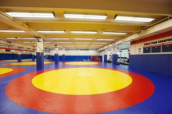 first wrestling academy opened in faridabad