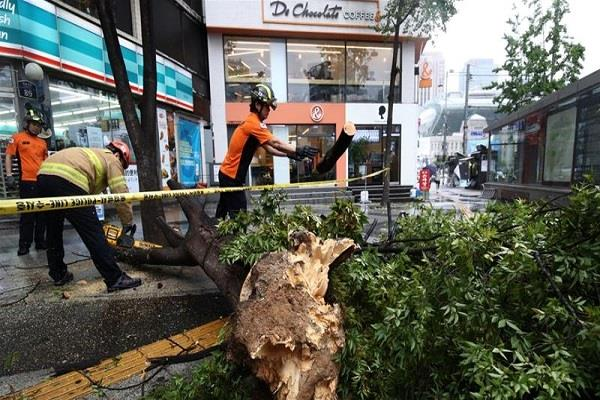 three killed by storm in south korea now crisis struck on north korea