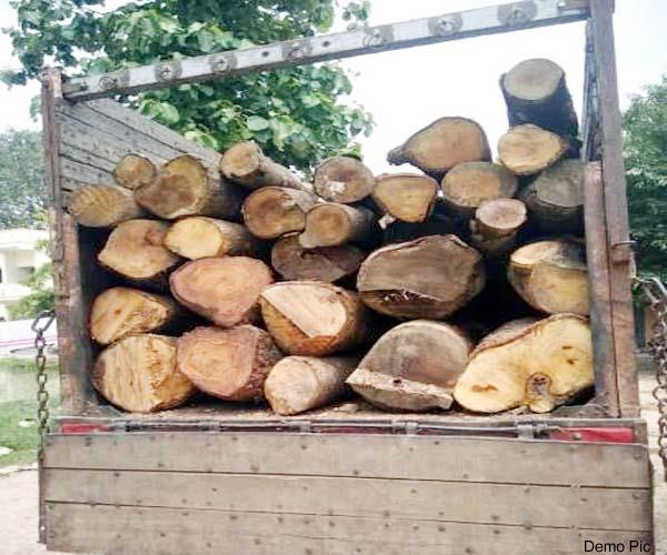 truck caught with full of wood