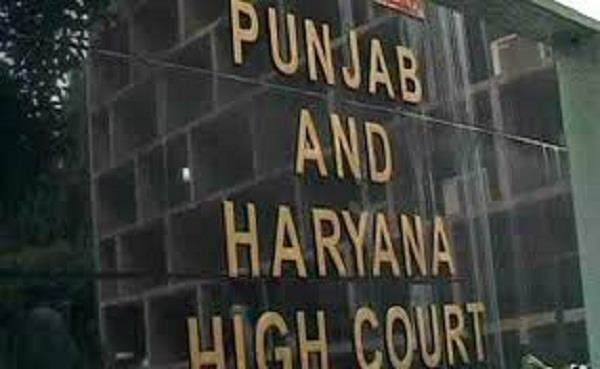 political rallies in punjab challenged in the high court