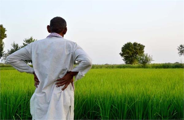 increase in area under irrigation in the state