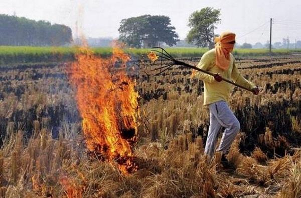 punjab haryana put rs 301 crores in giving money to farmers