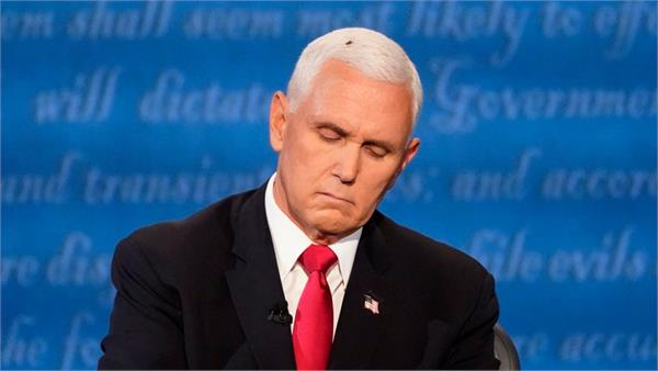 a fly sat atop mike pence s head  during the v p debate