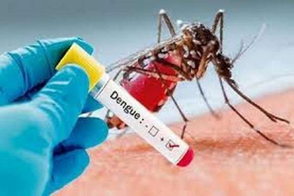 dengue becomes headache 32 dengue positive so far