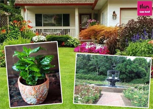 बगीचे के इस ओर लगाएं तुलसी का पौधा, मां लक्ष्मी की बनी रहेगी कृपा