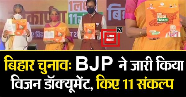 bjp released the vision document