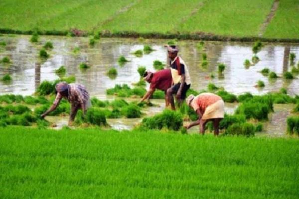 agriculture law narendra modi farmer msp support survey