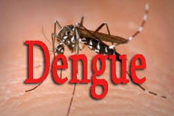 dengue in mansa