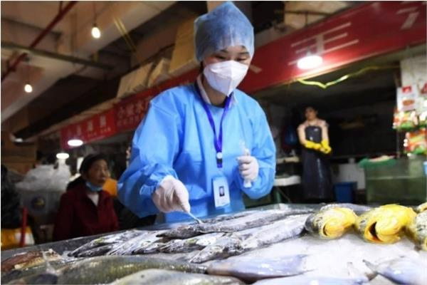 living coronavirus found on frozen food packaging in china