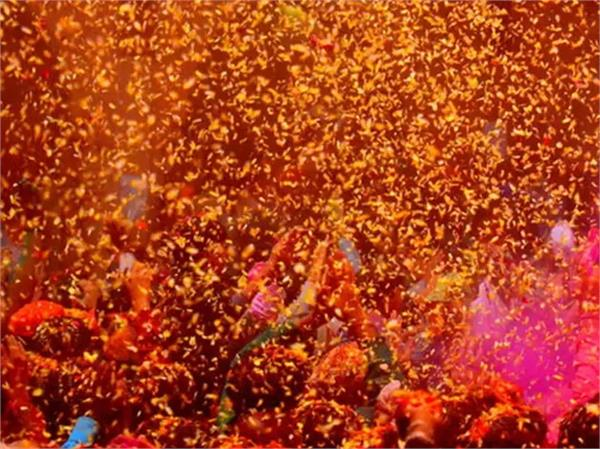 holi of flowers in the temples of braj