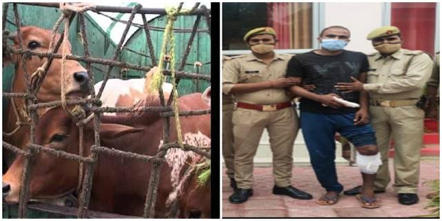 animal shooters and police encounter during checking one accused arrested