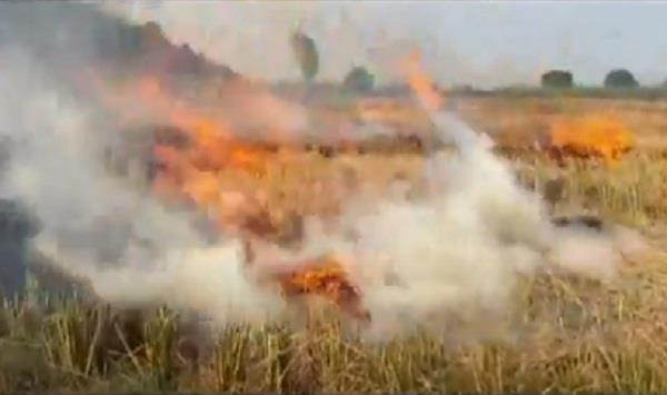 department fined received from 150 farmers for setting crop residues on fire