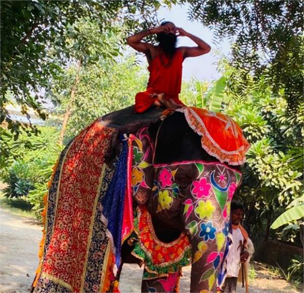 baba ramdev fell while doing yoga on elephant video goes viral