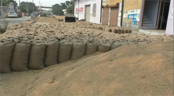 license suspension of 3 mandi brokers regarding up paddy