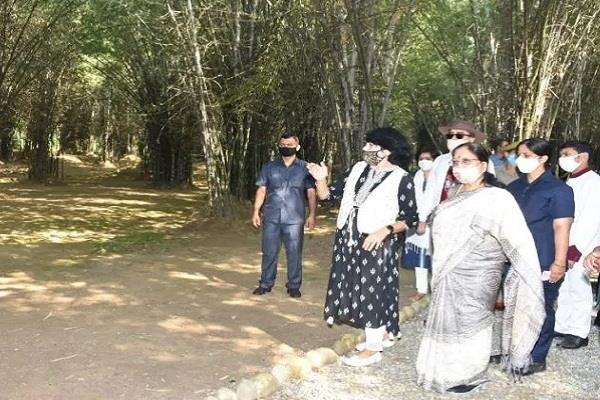 governor appealed to tourists to see anand forest