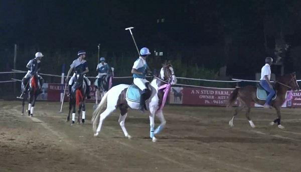 arena polo game on marwari horses for the first time