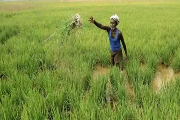 punjab agricultural laws bill twitter union capt amarinder singh b j p