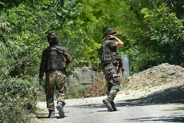 j k terrorists hurl grenades at security forces in pulwama tral