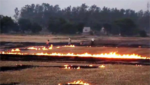 notice sent to farmers for stubble burning