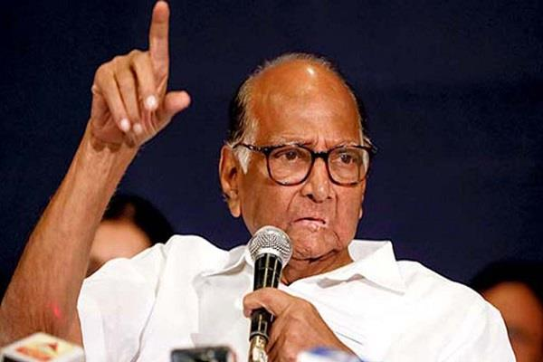 pawar blamed center s policies for rising onion prices