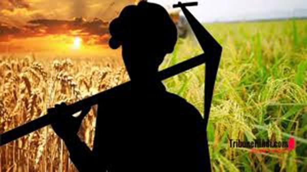 effect of farmer movement in punjab