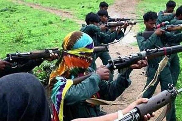 big operation in gairapatti maharashtra 5 naxalites killed by security forces