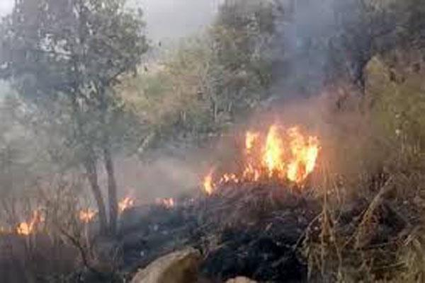 explosion in landmine due to forest fire in areas along the loc in poonch