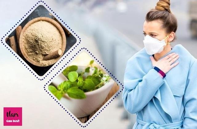 फेफड़ों पर नहीं होगा प्रदूषण का असर, बस खाते रहें ये 7 आहार