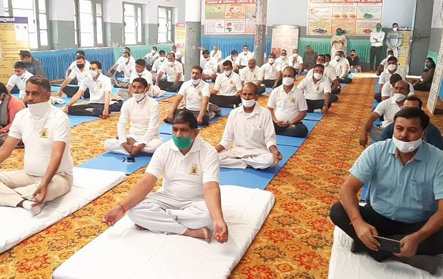trainers of yoga will be prepared in the whole haryana