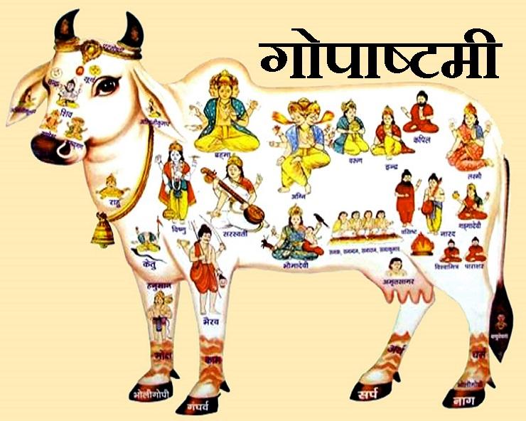 PunjabKesari, Gopashtami 2020, gopashtami 2020 date, gopashtami kab hai, gopashtami 2020 iskcon, gopashtami 2020 date and calendar, gopashtami 2020 Shubh Muhurta, gopashtami Pujan vidhi, fast and Festivals, Dharm, Punjab kesari