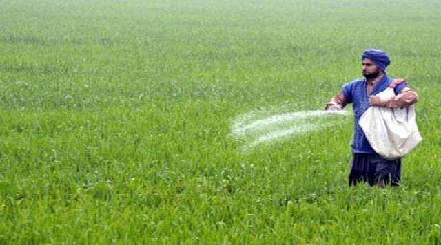 urea crisis deepens in punjab deficiency of 7 lakh tons