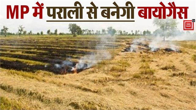 madhya pradesh government s unique initiative to tackle pollution