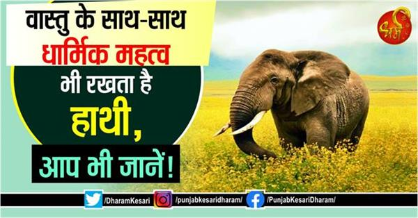 along with vastu elephant also has religious significance