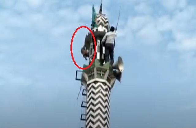 the monkey sat on the mosque tower for 4 days this is the reason