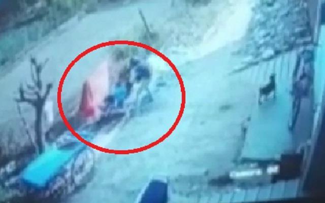 shot in woman s head in jind