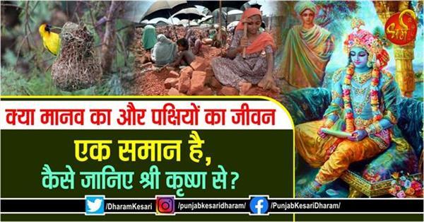 sri krishna geeta updesh in hindi