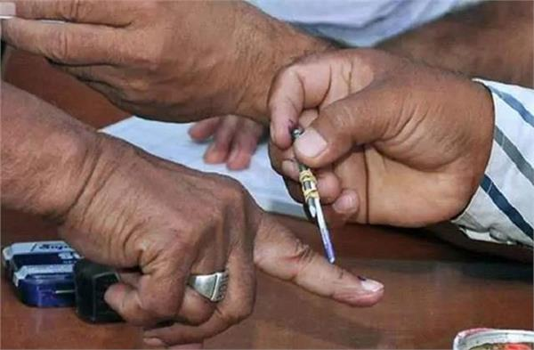 up teacher graduation election mlc voting begins amid tight security