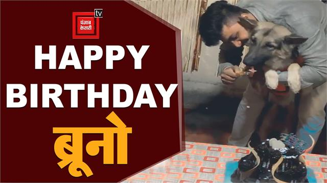 dog s birthday in betul made with pomp