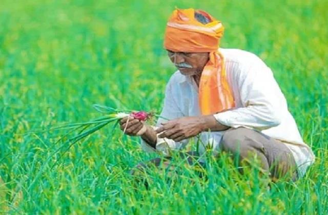 65000 crore fertilizer subsidy announced for farmers