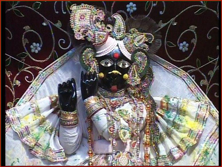 PunjabKesari Banke Bihariji Temple in Vrindavan
