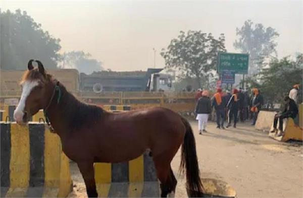 farmers will use horse for entering in delhi