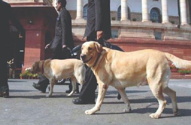 over 2300 dogs and 1415 horses serving police in india