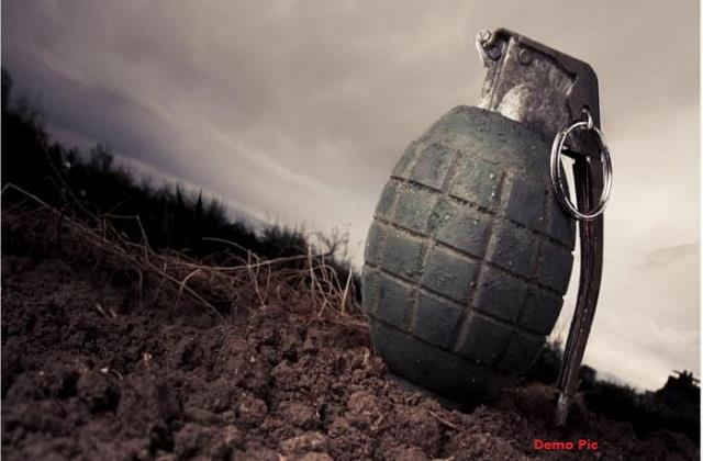 grenade found in large number from indo pak border