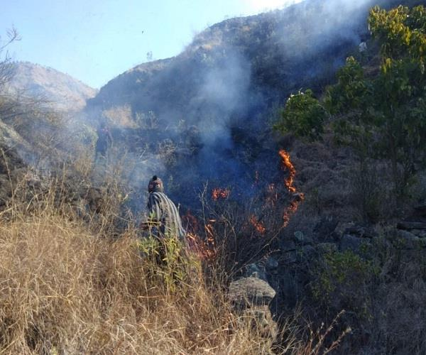 as the weather clears fire in rampur forests