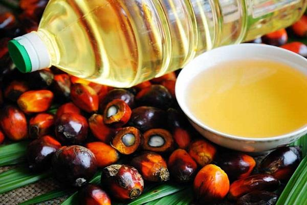 thousands of tons of palm oil stuck at ports