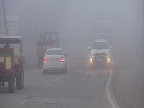 people are taking help of fire to avoid cold in sundernagar