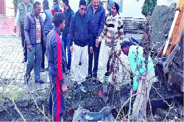tragic accident manhole was broken cow fell in rain pipe